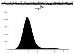 Fig3_Kv1.3