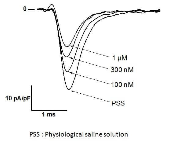 Jingzhaotoxin III #12JGZ003 Nav1.5 sodium channel blocker