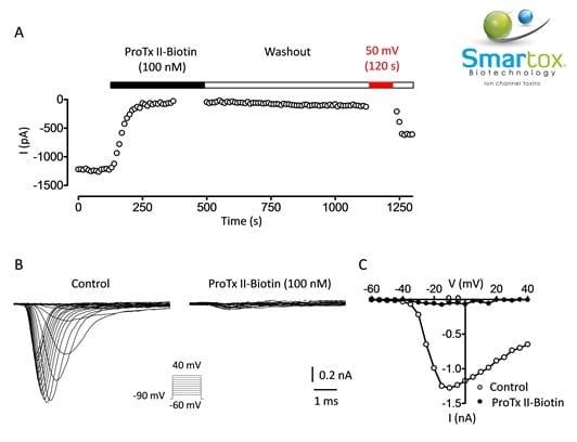 ProTx-II Biotin - Smartox Biotechnology